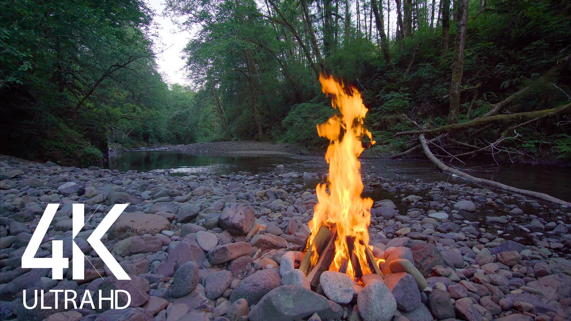 River and Campfire Unity. Part 1