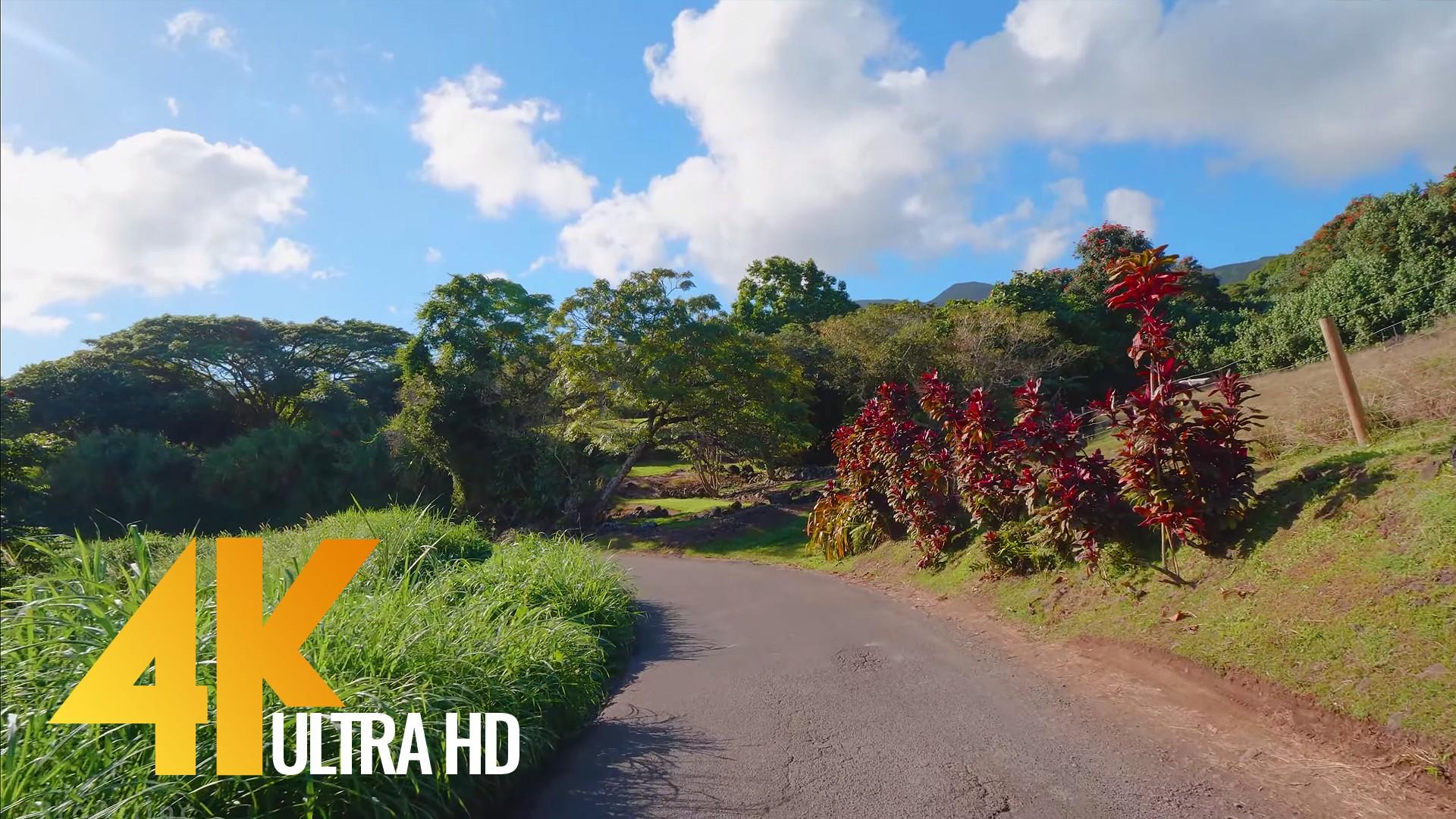 Road to Hana 2
