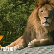 Warwaw Zoo