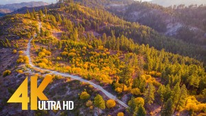 mountain home road FROM AIR YOUTUBE fall foliage relax drone