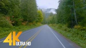 AUTUMN ROAD 2 Trailer