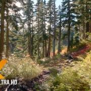 Baker-River-Trail