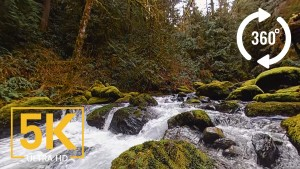 Stones of the Skagit River - VR video