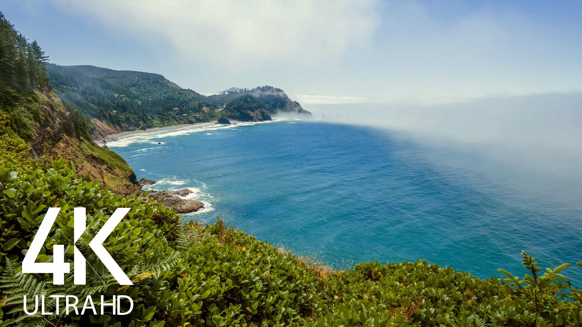Amazing Ocean Sound and Premium Ocean Views
