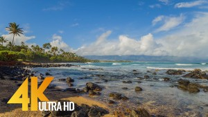 Maui Island - Tropical Beach Relaxation Video. Part 2