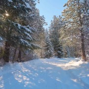 Winter Scenic Drive