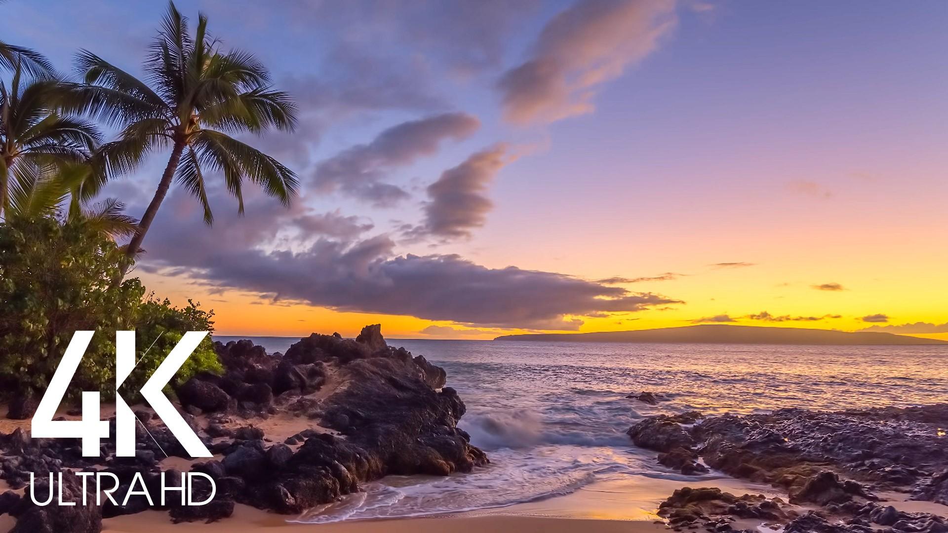 tropical-beach-evening