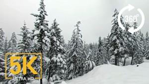winter-scenery-360
