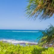 tropical-island-waves