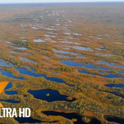 Latvian Nature Airview Nature Relax Video_