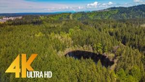 Around the Lake Trail Tiger Mountain Virtual Forest Walk_