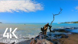 Calming Sound of Big Island's Beaches