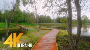 Landscapes of Lithuania Virtual Nature Walk