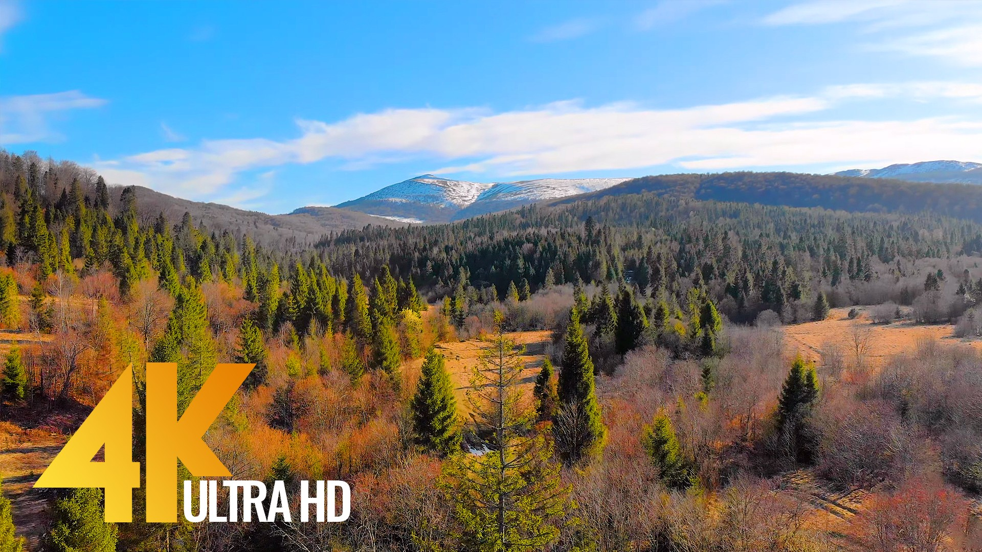 Spring_Beauty_of_the_Carpathian_Mountains_from_the_Height_of_Bird's