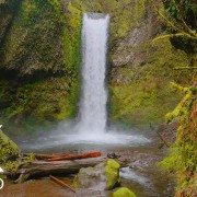 Wiesendanger Falls Oregon Waterfalls