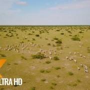 Boundless Botswana