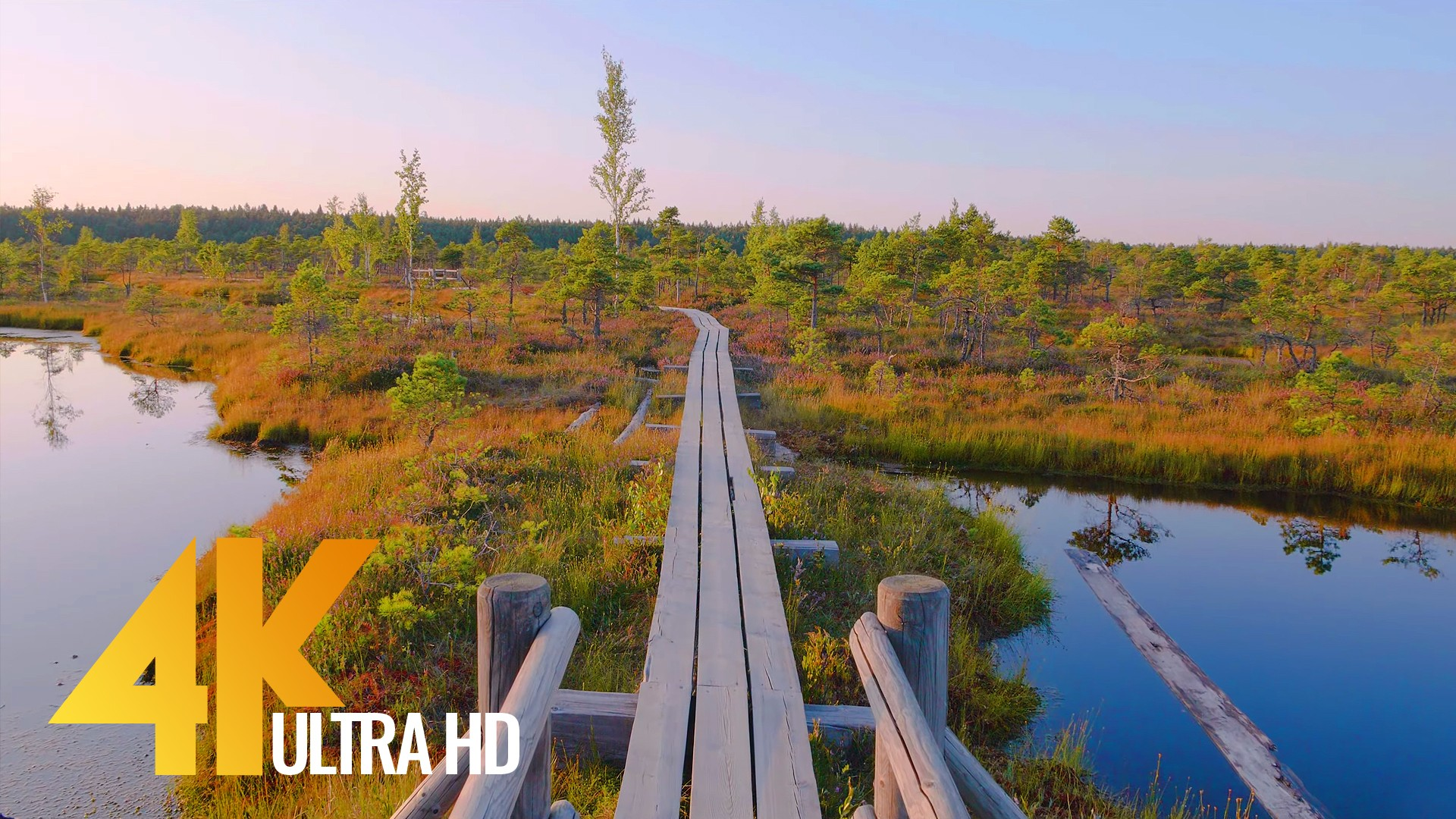 The beauty of Latvian Nature Walking Tour