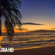 Maui Island, Hawaii Part 3 Nature Relax Video_trailer