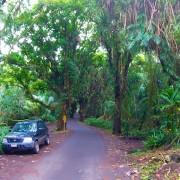 hawaii-roads