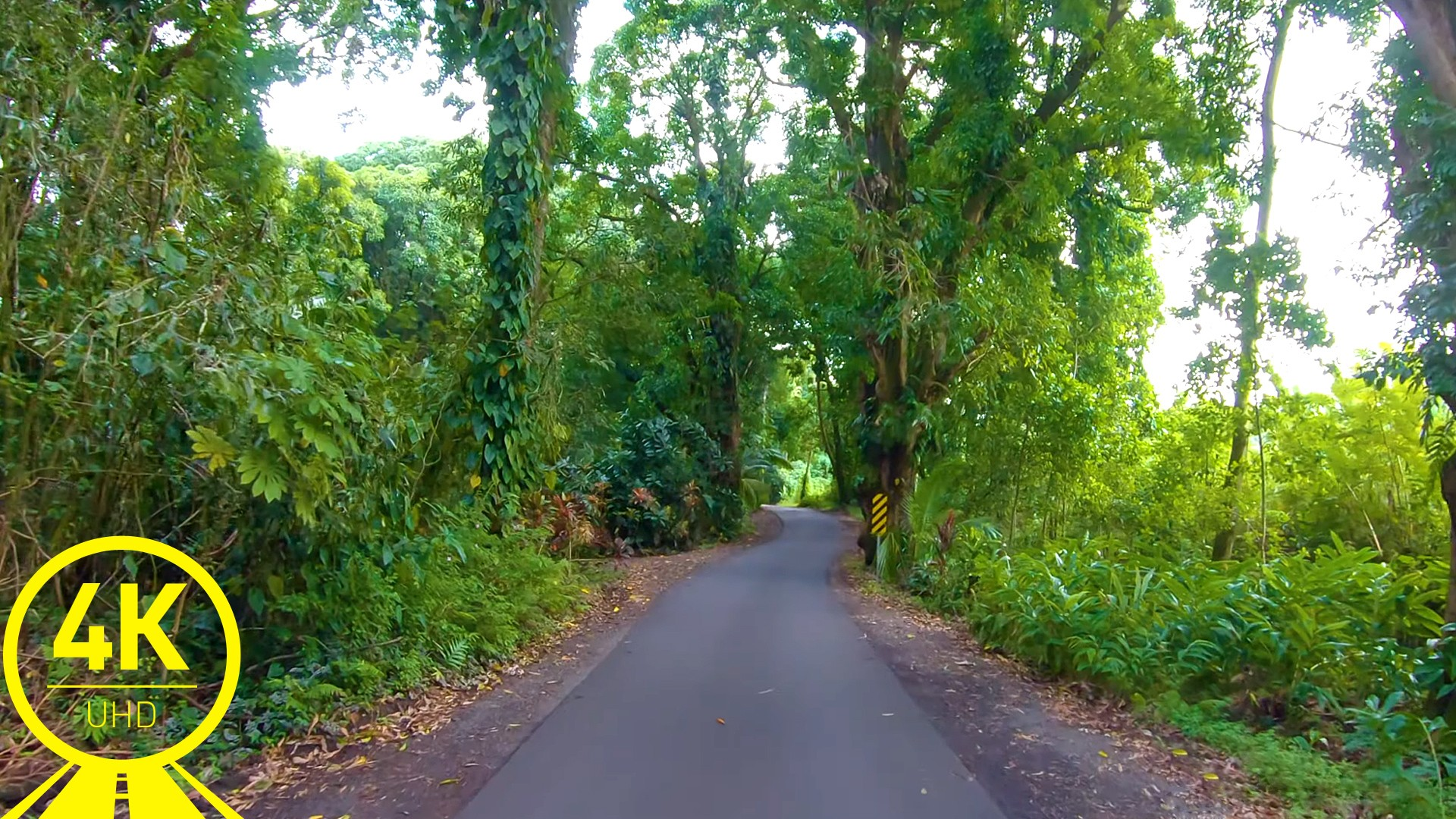 road-virtual-scenery