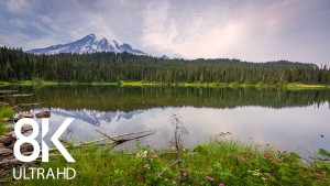 Summer_Allure_of_Reflection_Lake,_Mount_Rainier_Area_Nature_Relax (2)