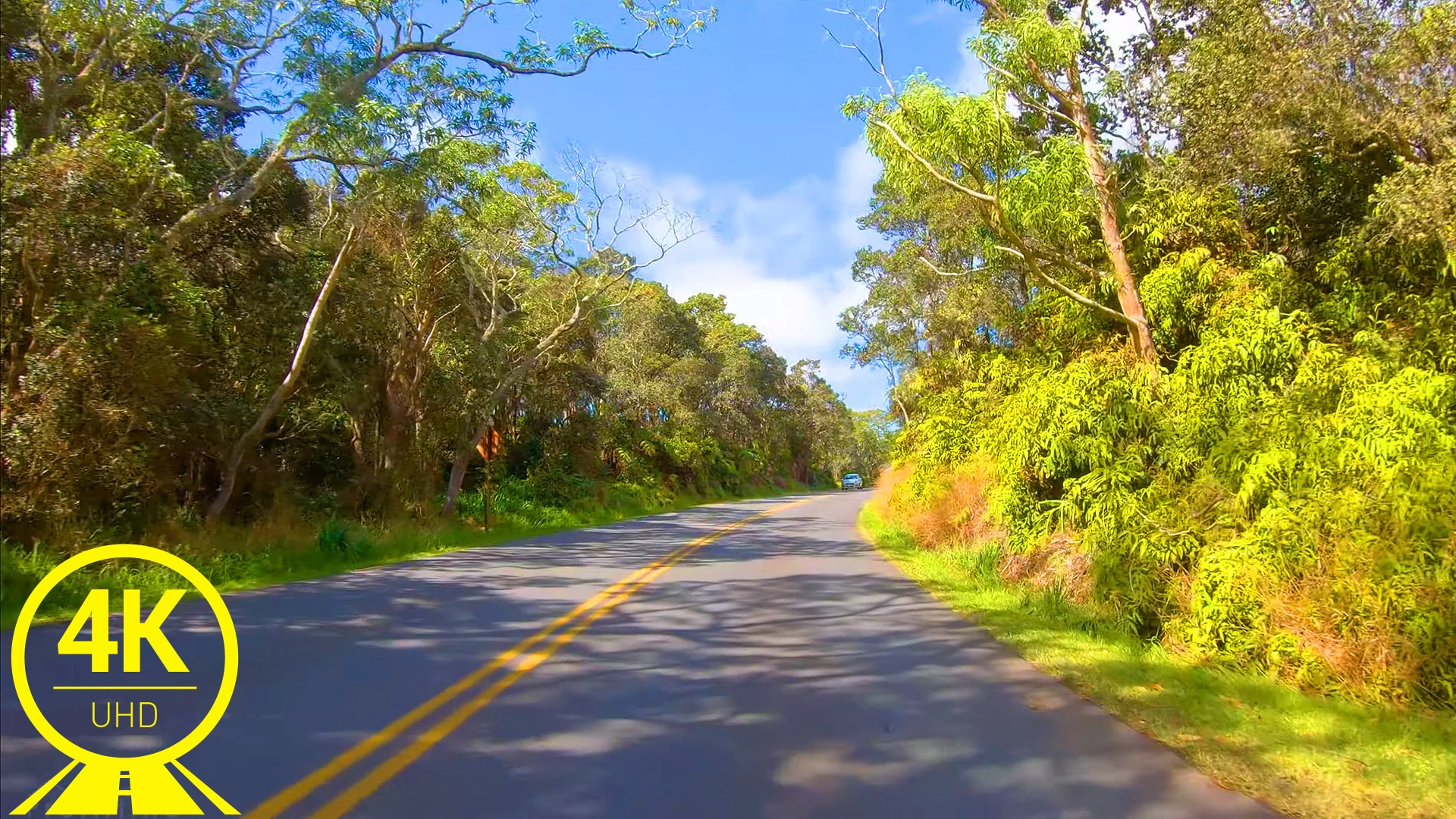 Hawaii Roads front 6