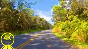 Hawaii Roads front 6