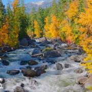 amazing-rivers-2