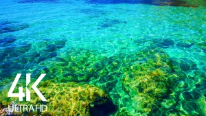 CLEAR WATER 1