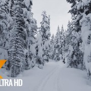 Scenic Nature Trails of Canada Wintertime Part 2