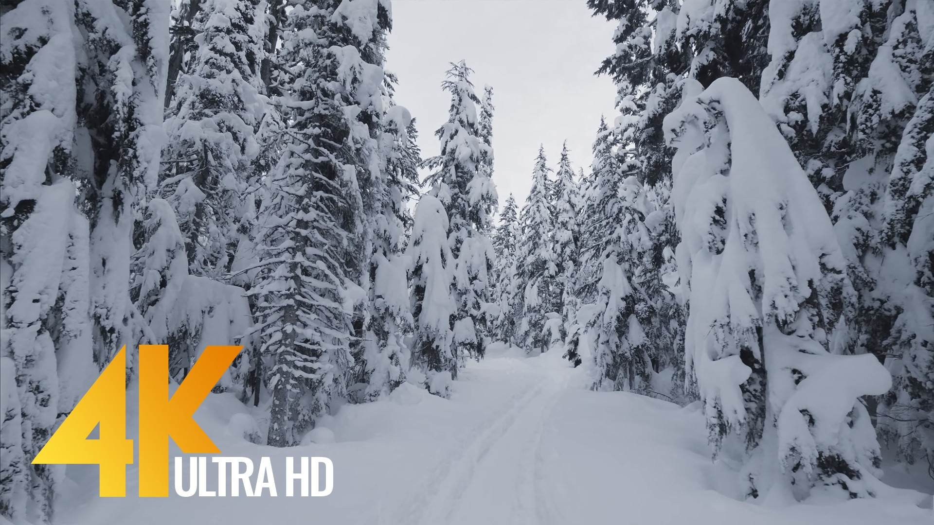 Scenic Nature Trails of Canada Wintertime Part 2