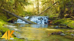 4K_Beauty_of_Canadian_Nature_Scenic_Nature_Film_Part_#6_Short_Preview
