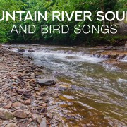 4k Bystrytsya River, Carpathian Mountains 8 Hours YOUTUBE