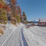 4k Jasper National Park CANADA PART 2 Walking tour YOUTUBE