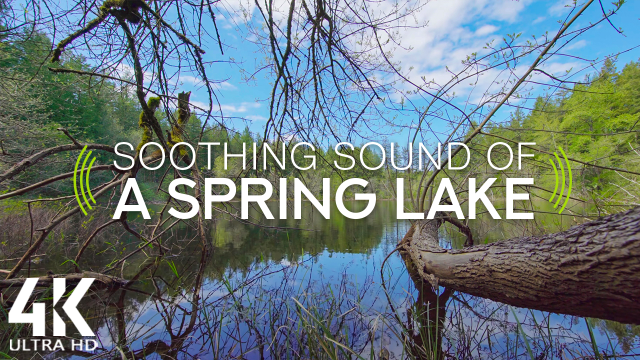 4k SOOTHING SOUND OF A SPRING LAKE 8 HOUR YOUTUBE