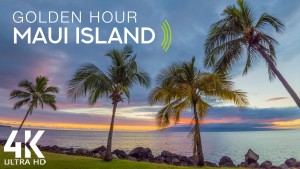 4k_Golden_hour_on_tropical_island_Maui_Island,_Hawaii_Nature_Relax