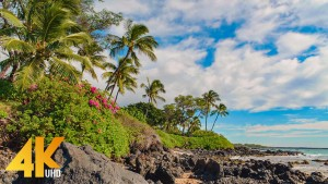 4k_Maui_Island,_Hawaii_Part_3_Nature_Relax_Video_FILM_YOUTUBE