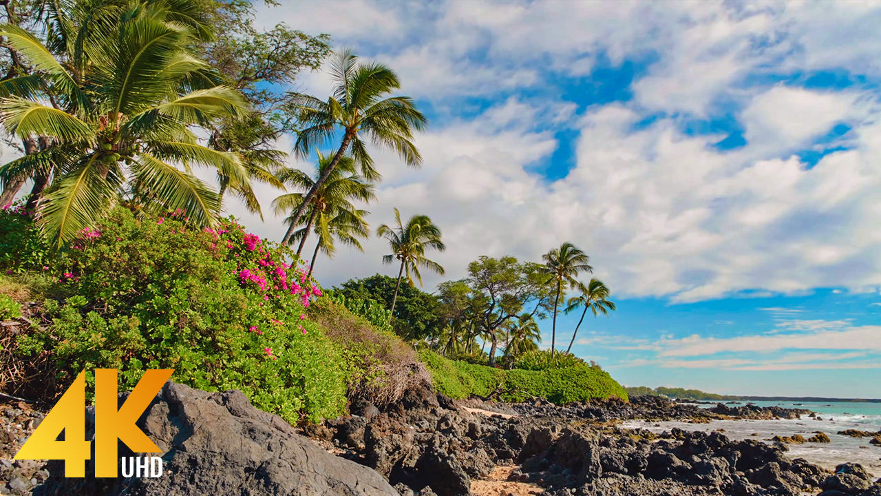 4k_Maui_Island,_Hawaii_Part_3_Nature_Relax_Video_FILM_YOUTUBE