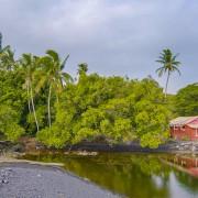 8k_Incredible_Diversity_of_the_Big_Island,_Hawaii_Part_1_Scenic
