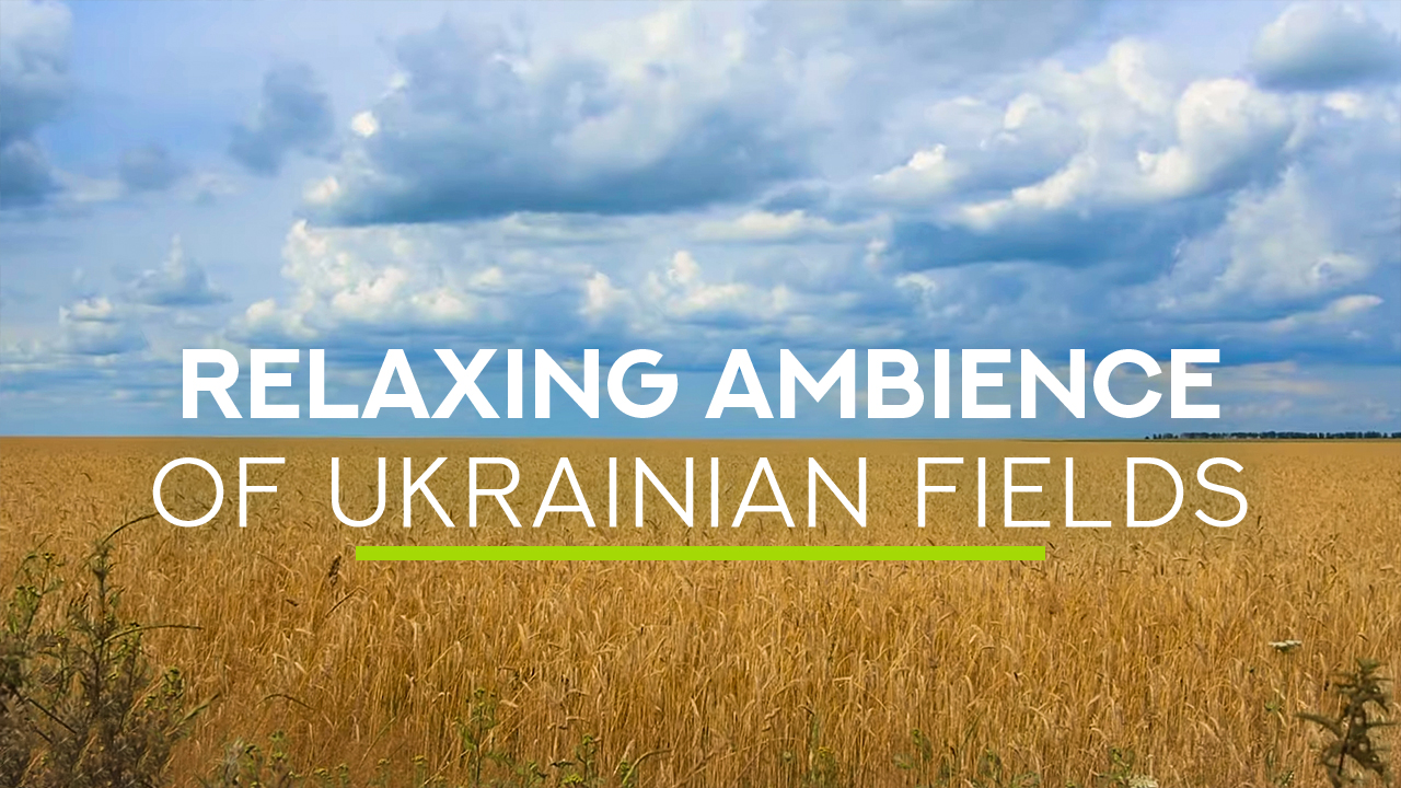 HD_Ukrainian_wheat_fields_near_Chernigov_Nature_Relax_Video_8_HOURS