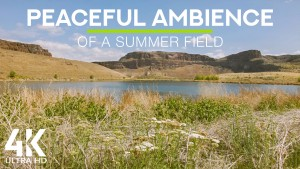 4K_Ancient_Lakes_Eastern_Washington_State_NATURE_RELAX_VIDEO_8_Hours