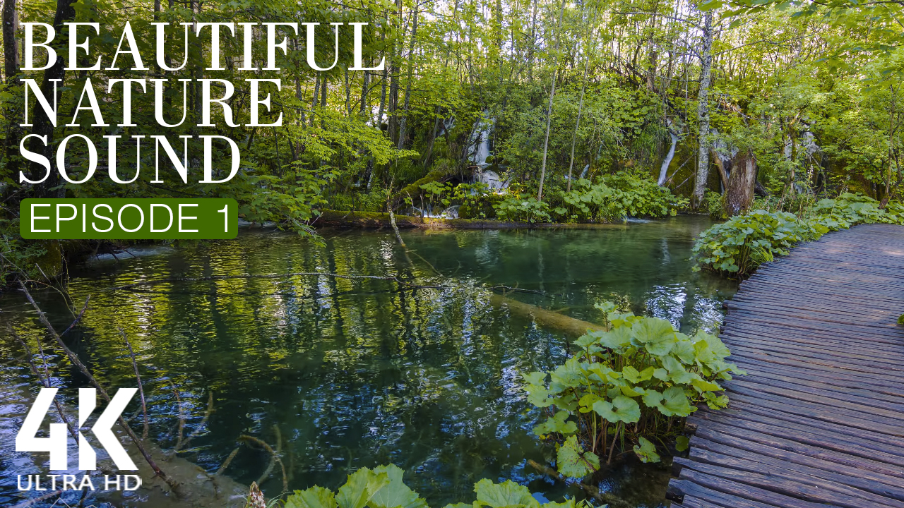 4K_BEAUTIFUL_NATURE_SOUND_EPISODE_1_NATURE_RELAX_VIDEO_8_HOUR_YOUTUBE