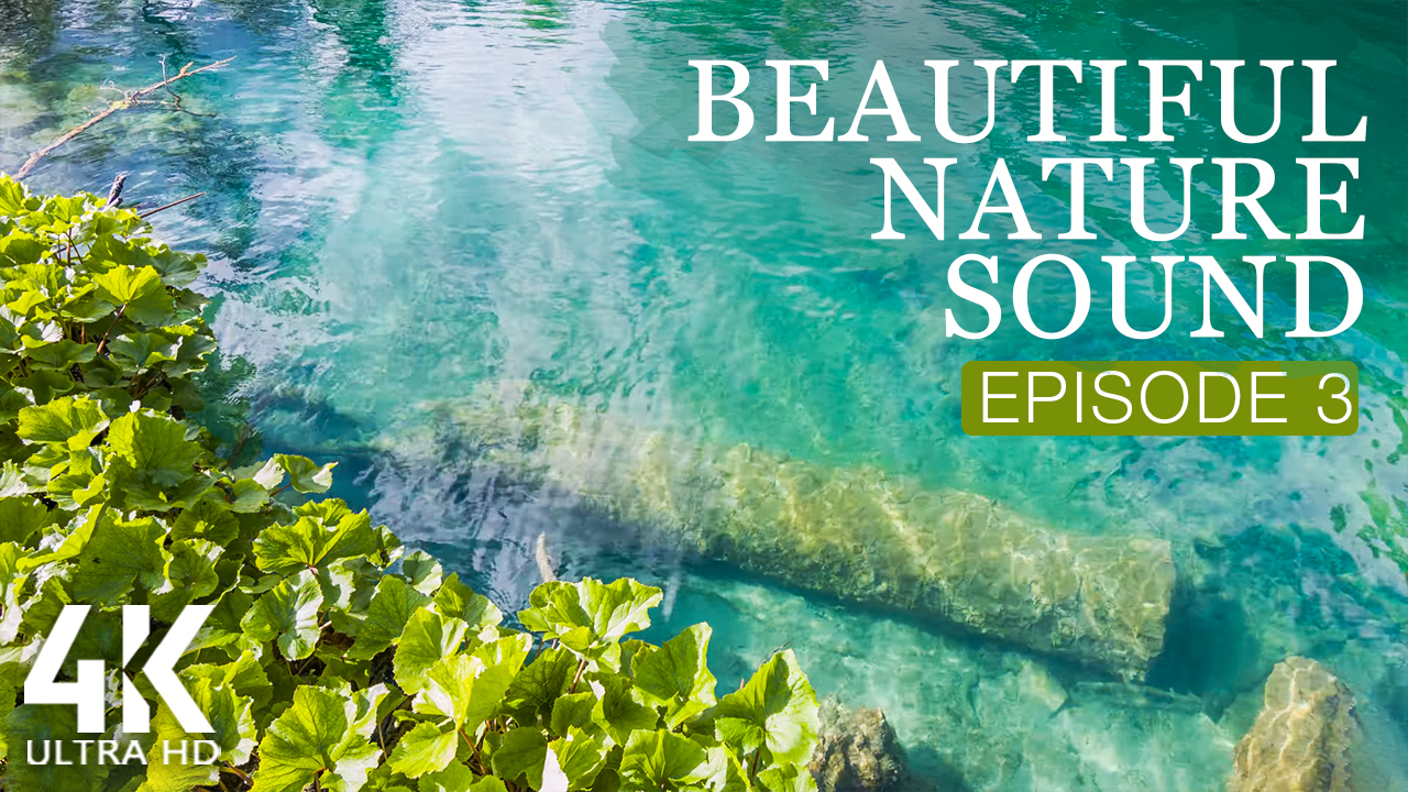 4K_BEAUTIFUL_NATURE_SOUND_EPISODE_3_NATURE_RELAX_VIDEO_8_HOURS_YOUTUBE