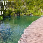4K_BEAUTIFUL_NATURE_SOUND_EPISODE_4_NATURE_RELAX_VIDEO_8_HOURS_YOUTUBE