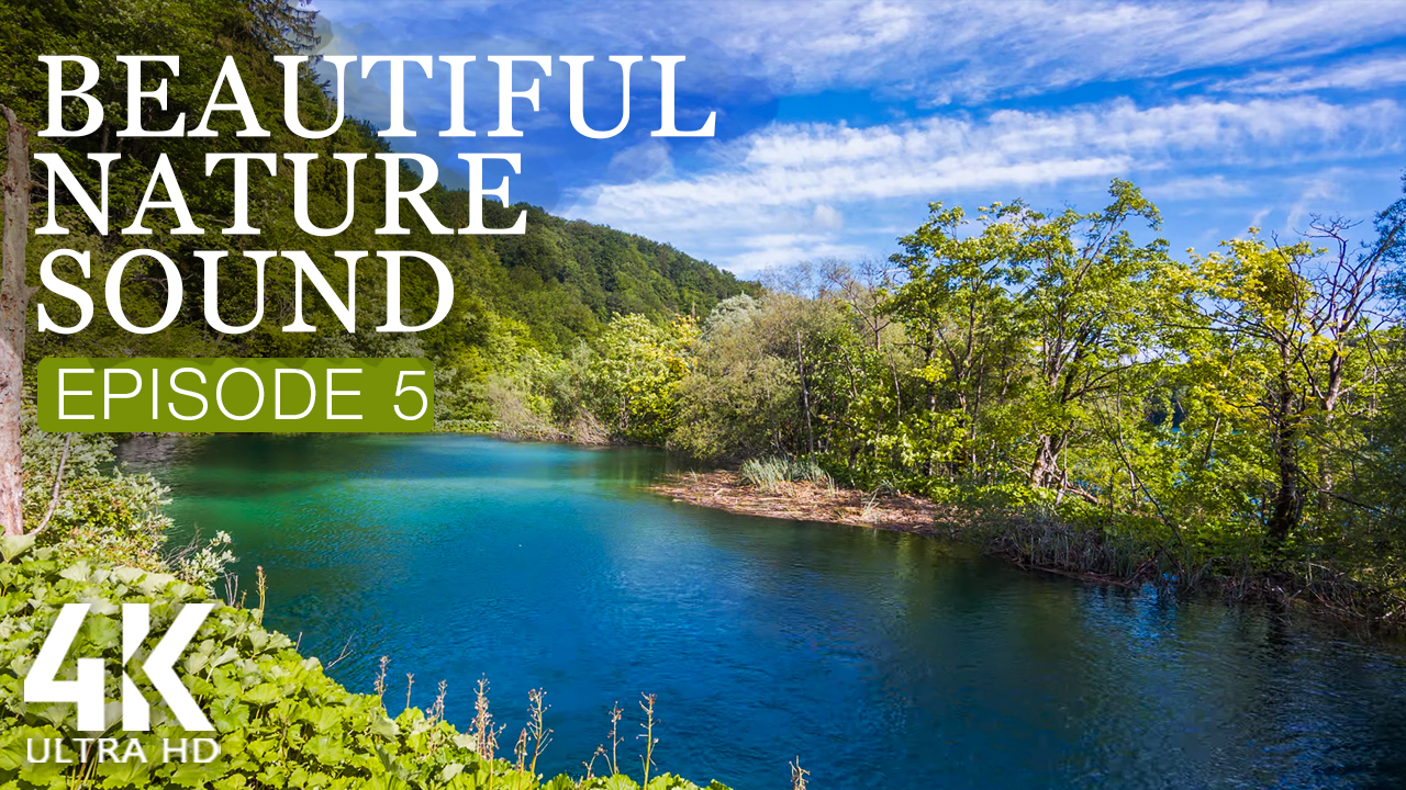 4k_Beautiful_Nature_Sound_Episode_5_NATURE_RELAX_VIDEO_8_HOURS_YOUTUBE