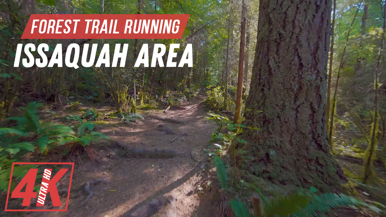 4k_Forest_Trail_Running,_Issaquah_Area,_WA_Outdoor_Exercise_Video