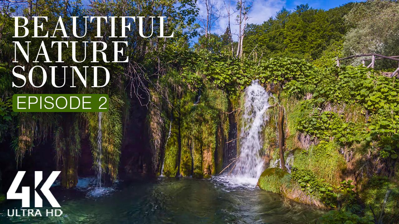 beautiful-nature-sounds-2