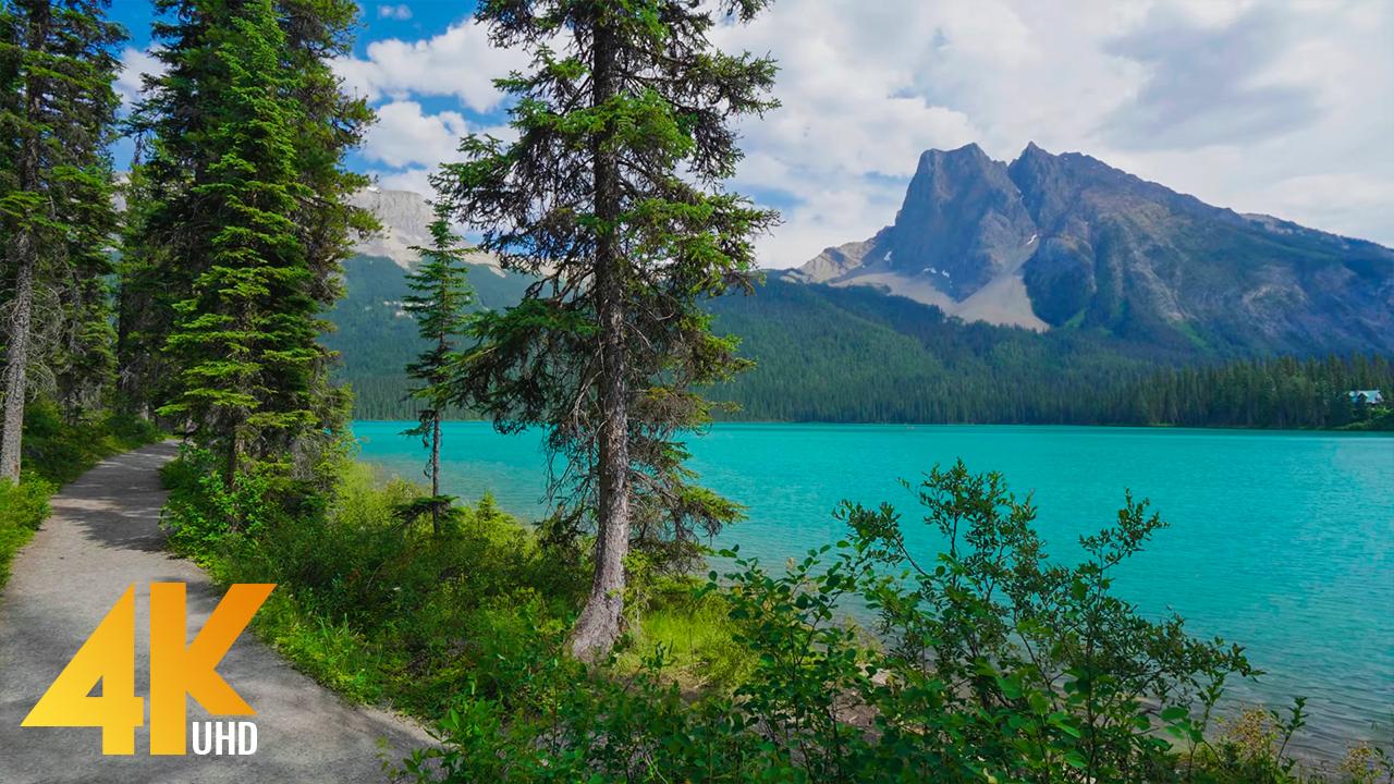 4K_Walking_Near_the_lake_Emerald_lake,_yoho_national_park,_canada