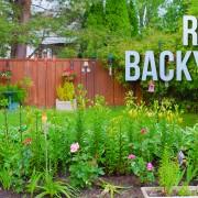 4k RAINY BACKYARD Nature Relax Video 8 HOURS YOUTUBE