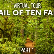 Trail_of_Ten_Falls_SILVER_FALLS_STATE_PARK_Part_1_360°_VR_Video